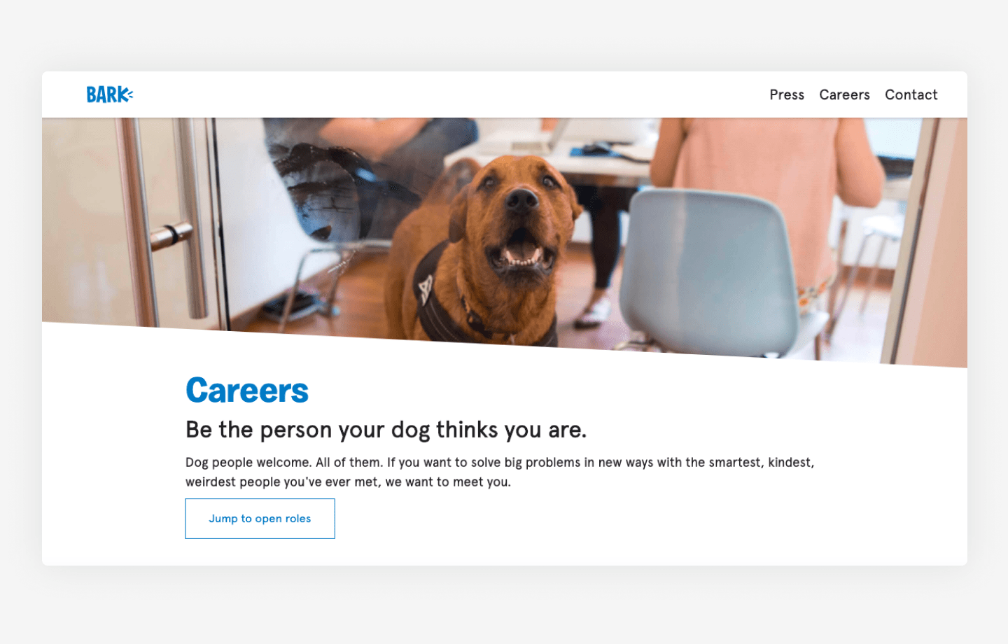 Bark's website career page example