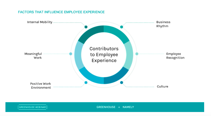 Greenhouse and Namely factors that influence employee experience graph