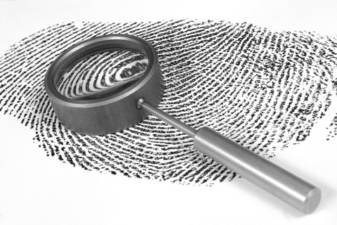 Fingerprint blog